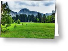 On The Yosemite Valley Floor Greeting Card