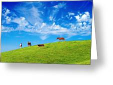 On Top Of The Hill Greeting Card