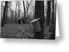 Once Upon A Time At The Sugar Shack Greeting Card