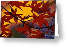 One Autumn Evening By Kaye Menner Greeting Card