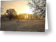 One Cold Morning Greeting Card