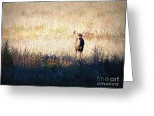 One Cute Deer Greeting Card