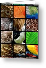 One Day At The Zoo Greeting Card by Michelle Calkins