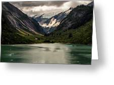 One Day In The Alaskan Wilderness Greeting Card