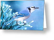 One Frosty Morning Greeting Card