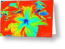 One Hot Flower Greeting Card