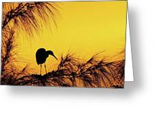 One Of A Series Taken At Mahoe Bay Greeting Card