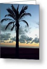 One Palm Greeting Card