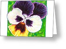 One Pansy For Marti Greeting Card