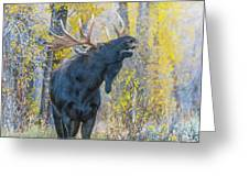One Proud Bull Moose Greeting Card