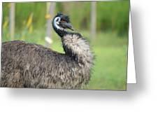 One Serious Bird Greeting Card