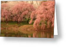 One Spring Day - Holmdel Park Greeting Card