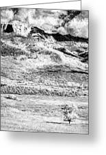 One Stands Alone II Greeting Card