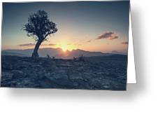 One Tree And Sunset Greeting Card
