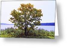 One Tree Hudson River View Greeting Card