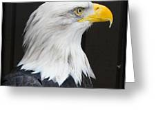 One Wing Short Greeting Card