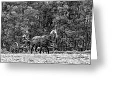 One With The Land - Bw Greeting Card
