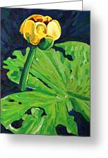 One Yellow Lily Greeting Card