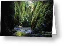 Oneonta Gorge Adventure Greeting Card