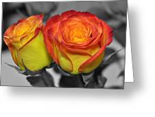 Only Color Greeting Card