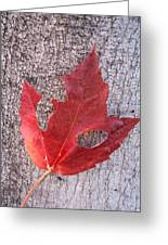 Only One Leaf To Live Greeting Card