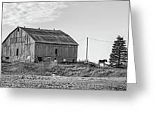Ontario Farm 5 Bw Greeting Card