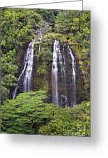 Opaekaa Falls - Kauai Greeting Card