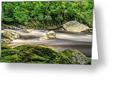 Oparara River Greeting Card