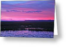 Open Marsh Greeting Card