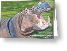 Open Mouthed Hippo On Wood Greeting Card