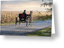 Open Road Open Buggy Greeting Card by David Arment