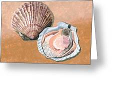 Open Scallop Greeting Card
