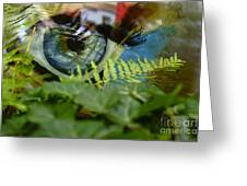 Open Your Eyes. Greeting Card