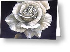 Opened Rose Greeting Card