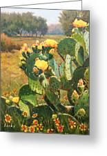 Opuntia In Bloom Greeting Card