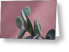 Opuntia Microdasys Greeting Card