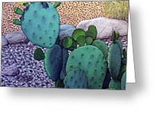 Opuntia Greeting Card