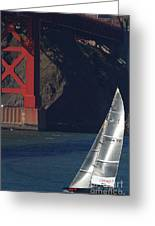 Oracle Racing Team Usa 76 International America's Cup Sailboat . 7d8071 Greeting Card