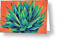 Orange And Agave Greeting Card