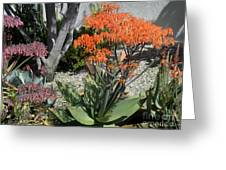 Orange And Pink Exotic Bell Flowers Greeting Card