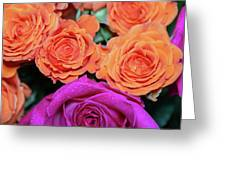 Orange And White With Pink Tip Roses Greeting Card
