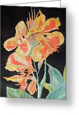 Orange And Yellow Canna Lily On Black Greeting Card