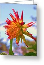 Orange And Yellow Dahlia Greeting Card