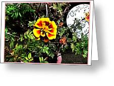 Orange And Yellow Flower Greeting Card