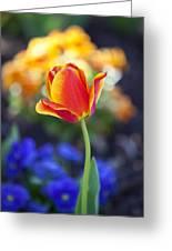 Orange And Yellow Tulip II Greeting Card