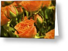 Orange Beauties Greeting Card