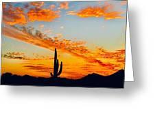 Orange Blossom Moments Greeting Card