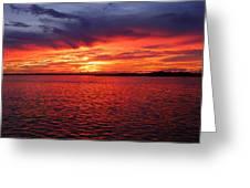 Orange Burst At Daybreak Greeting Card