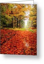 Orange Carpet Greeting Card