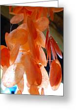 Orange Chimes Greeting Card